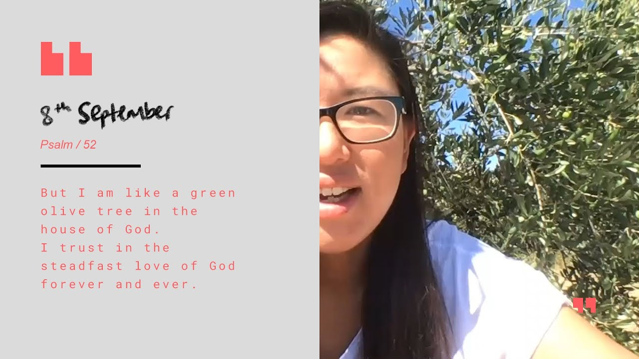 Daily Devotion with Lou Tan // Psalm 52 Cover Image
