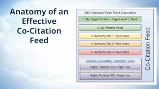 Anatomy of Effective Co-citation RSS Feeds