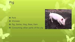 fiqh of food 12 halaal haraam animals 3