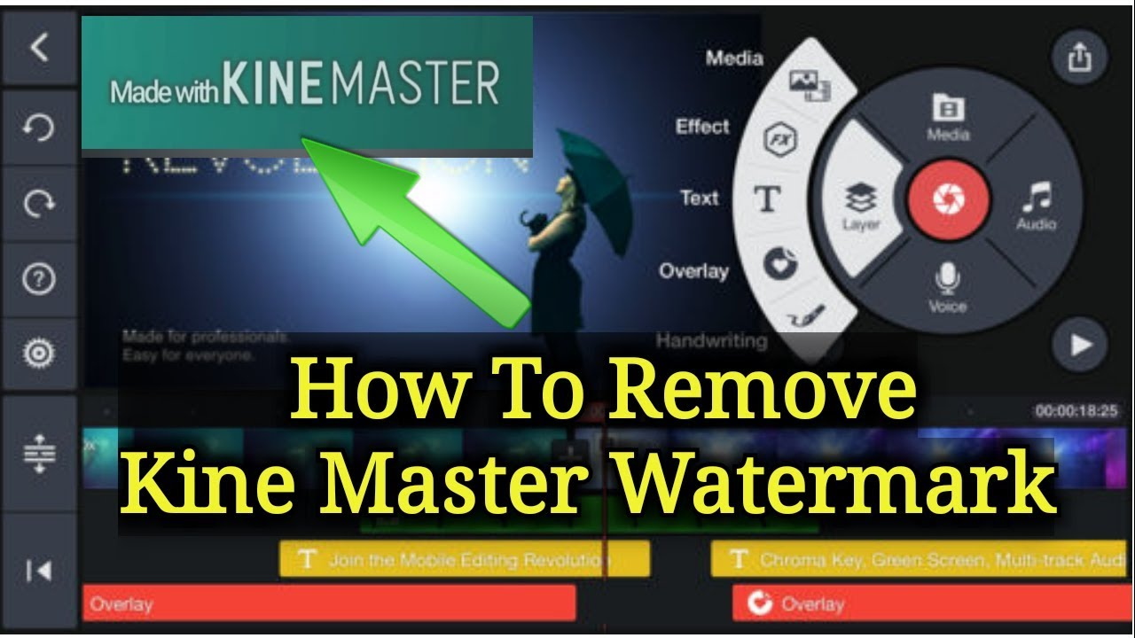 How to remove Download Master 77