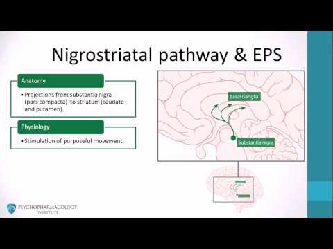 Dopamine pathways, antipsychotics and schizophrenia
