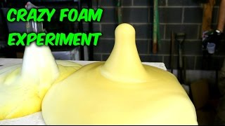 getlinkyoutube.com-Elephant's Toothpaste - Science Experiment