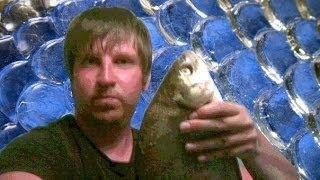 Готовимся на рыбалку(Насадки для мирной рыбы)