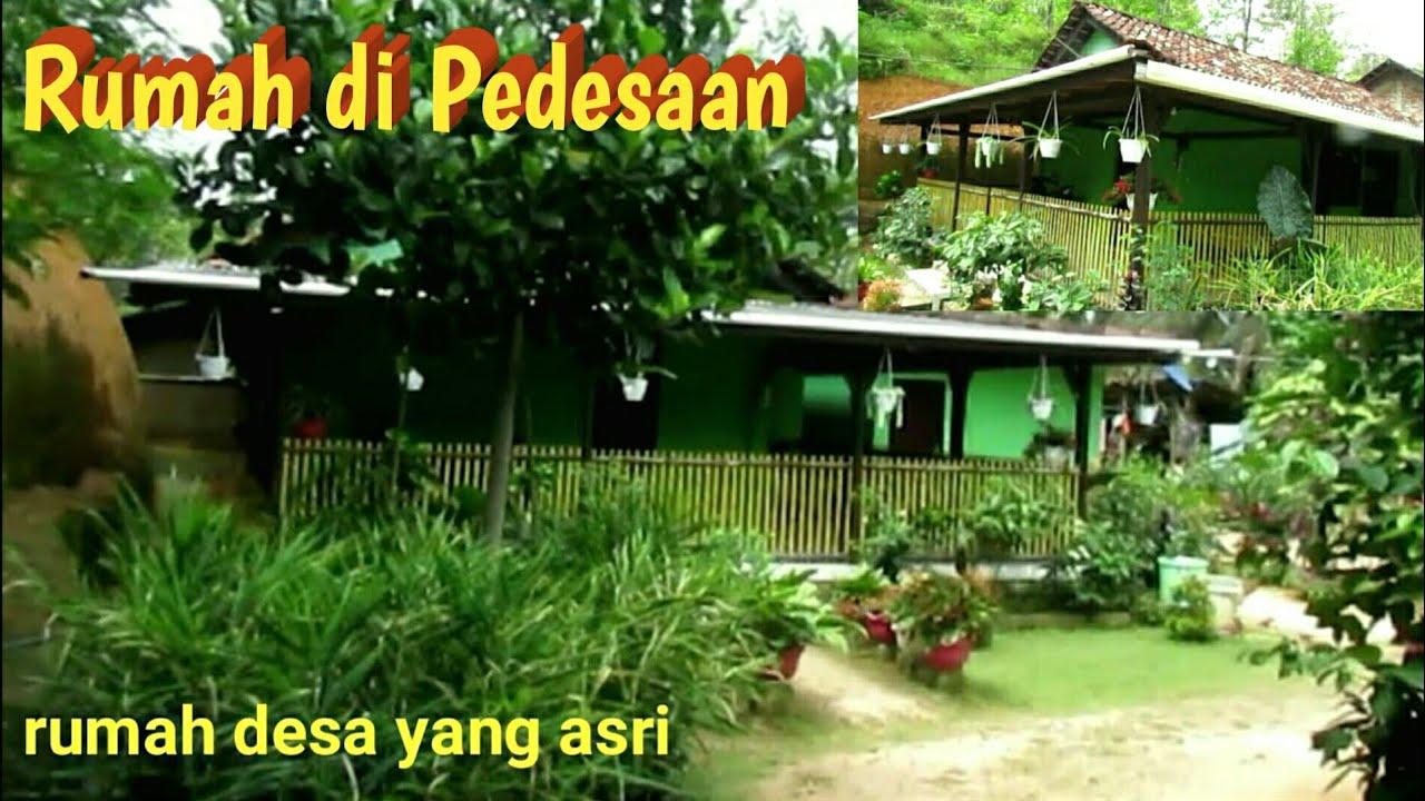 Rumah Pedesaan Yang Asri Di Pacitan Youtube Rumah desa yang asri