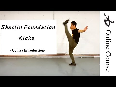 Shaolin Kung Fu Foundation Kicks Course - Introduction
