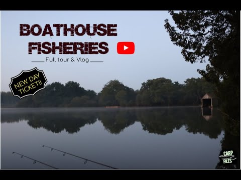 ** CARP FISHING ** BOATHOUSE FISHERIES, NEW DAY TICKET