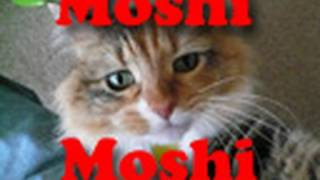 Why Japanese Say Moshi Moshi on the Telephone