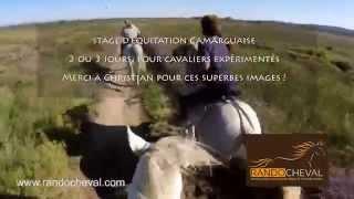 Equitation Camarguaise - Un stage Randocheval