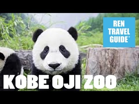 Kobe, Oji Zoo - Ren Travel Guide Travel Video