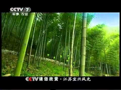 CCTV请您欣赏-江苏宜兴风光 Jiangsu Yixing scenery