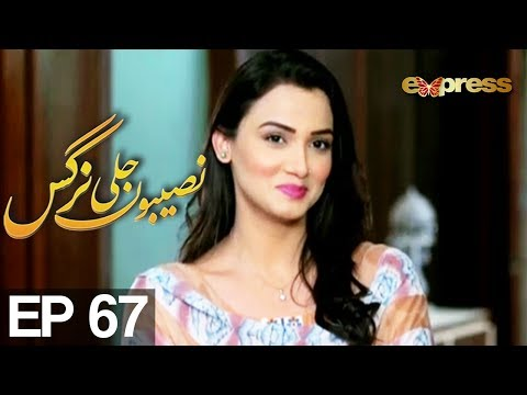 Naseebon Jali Nargis - Episode 67 - Express Entertainment