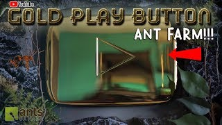 Turning My YOUTUBE GOLD PLAY BUTTON Into an ANT FARM!