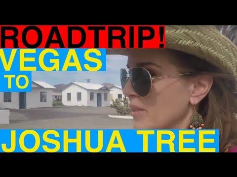 Roadtrip from Vegas to Joshua Tree via the Fabulous Mojave Preserve