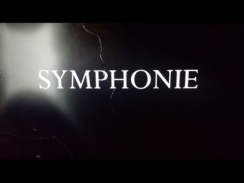 Symphonie (Cover) - Jonas Hein