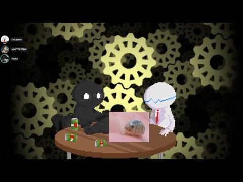 Research and Chill - No Bulli Edition