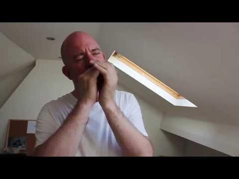 Blues harmonica lesson -