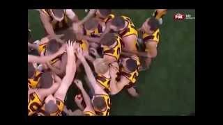 Never Been Better: 2014 AFL Grand Final - Hawthorn Vs Sydney