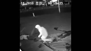 Ограбление по китайски. Бырубил коллегу кирпичом