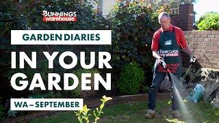 Gardening in September | WA | Bunnings Garden Diary