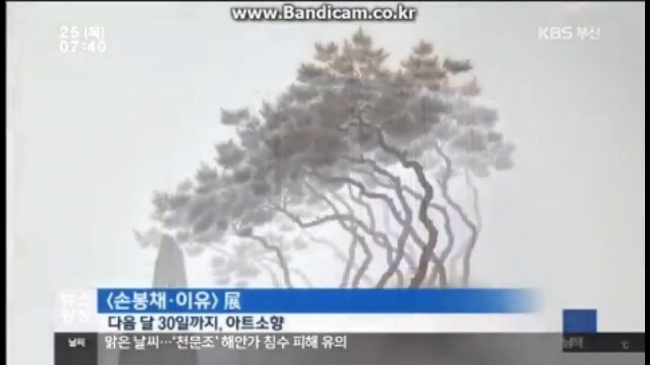 Son Bongchae, Lee Eu show, KBS news