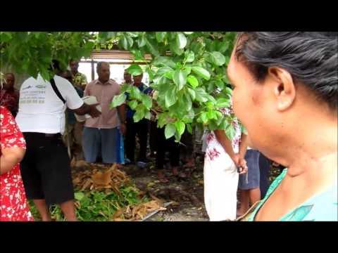Tuvalu BTOR - GLECRDS
