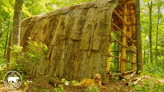 4-dogs-4-guys-build-a-longhouse-using-hand-tools-and-natural-materials-bushcraft