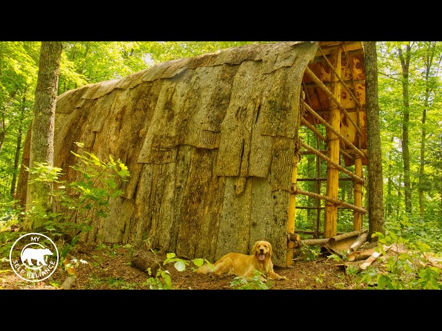 4 Dogs, 4 Guys Build a Longhouse Using Hand Tools and Natural Materials   Bushcraft