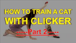 How To Train A Cat With Clicker - Part 2 - Training Pet Easy