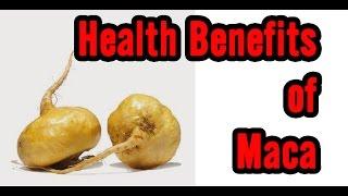 10 Health Benefits of Maca
