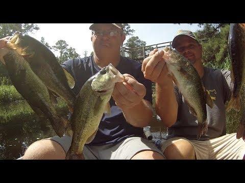 July Bass Fishing At Bayou Cane