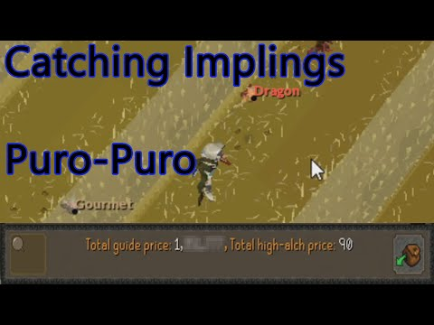 How Much Money Can Be Made In 1 Hour At Puro-Puro In OSRS?