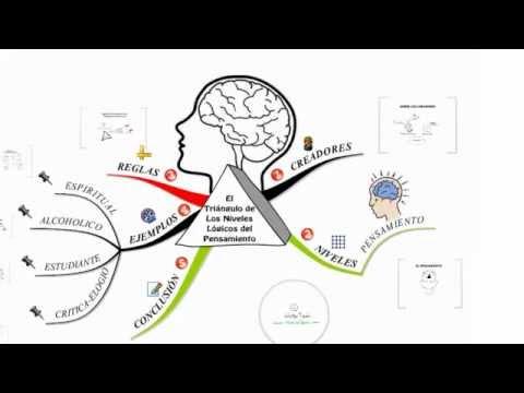 PNL El Triángulo De Los Niveles Lógicos Del Pensamiento