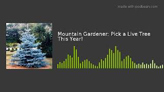 Mountain Gardener: Pick a Live Tree This Year!