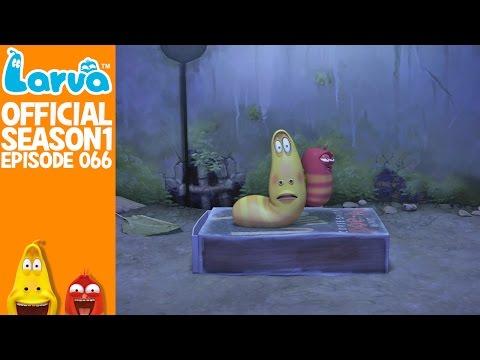 [Official] Super Glue - Larva Season 1 Episode 66
