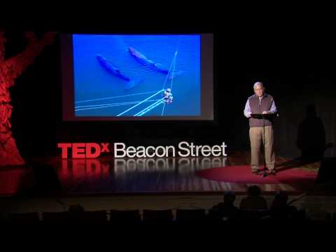 Attend the Whale Song: Roger Payne at TEDxBeaconStreet