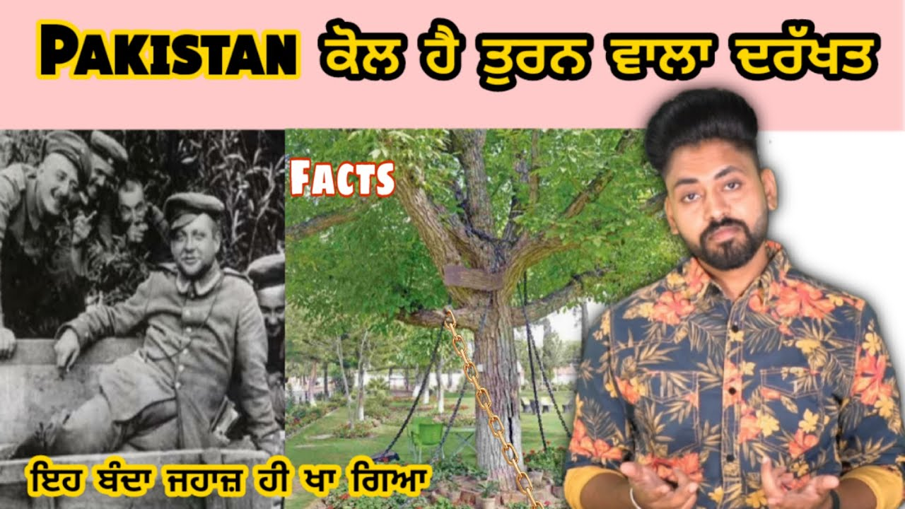 Walking Tree in Pakistan | facts  | ਪੂਰਾ plane khaan wala banda | Filmmaker Ruggero | Bill Gates