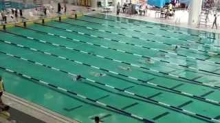 2014-15新界區小學界游泳比賽男甲50蛙式決賽