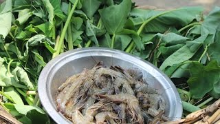 Village food | Taro leaf with prawn | Grandmother recipes-27