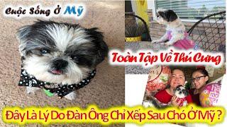 ❀//Vlog 85// Đây Là Lý Do Tại Sao Ở Mỹ Đàn Ông Chỉ Xếp Sau Con Chó.... Chó Sướng Quá Mà