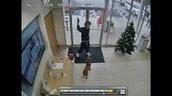 Bizarre Florida credit union robbery caught on surveillance video