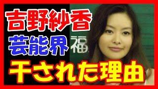 【あの人は今】元祖チャイドル・吉野紗香 2017 吉野紗香 動画 30