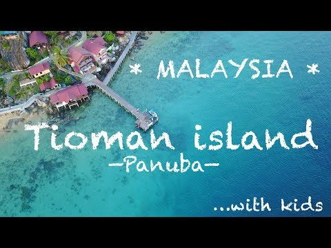 #26. We've found the best place to stay on Tioman Island!! | Malaysia 2017
