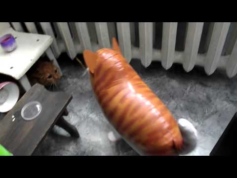 Cat vs Cat Balloon quick slap