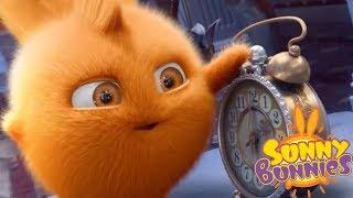 Sunny Bunnies MAGIC ALARM | Cartoons For Children | Funny Cartoons For Children