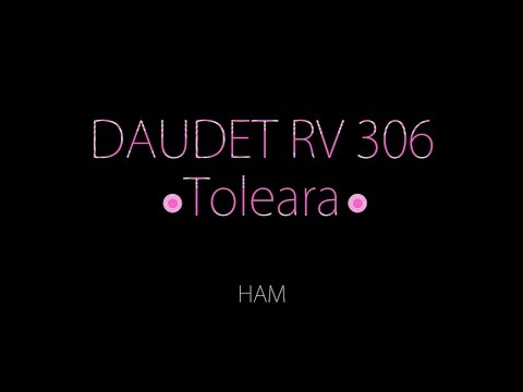 Daudet RV 360 - Toleara (K'Bossy cover) lyrics