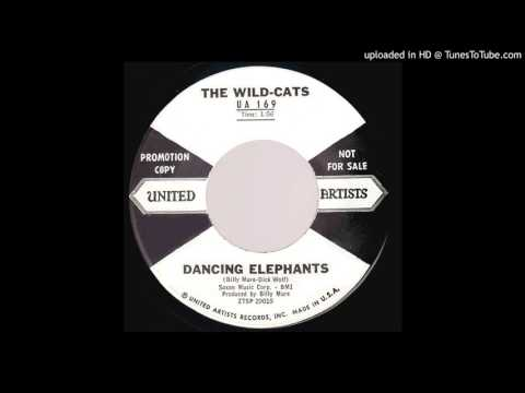 THE WILD-CATS: Dancing Elephants (United Artists Records) 1959