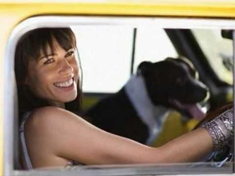 Lobo - Me and you and a dog named Boo - Lobo