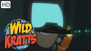 Wild Kratts - Best Season 1 Moments! (Part 6) | Kids Videos