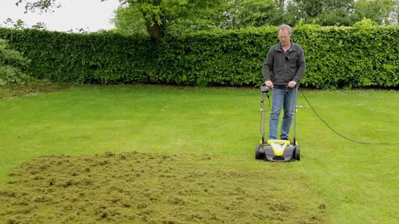 luftning af græsplæne hvornår