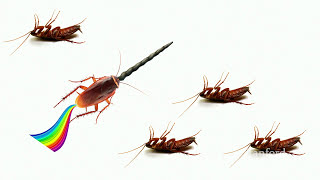 How to Find Product Market Fit - CS183F